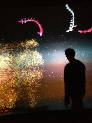 Time of Doubles: Flux (2011) immersive art installation by Haru Ji and Graham Wakefield